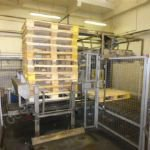 Odenberg Palletiser with Case Packer