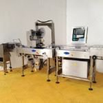 Delford Model 8000 Checkweigher & Labelling Machine