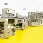 Wright Pugson C23 Cheese Cutter with Hayssen Sandiacre RT2000E Flow Wrapper
